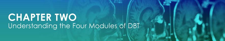 DBT Modules